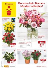 Aktueller Netto Marken-Discount Prospekt, Unsere Markenstars, Seite 6
