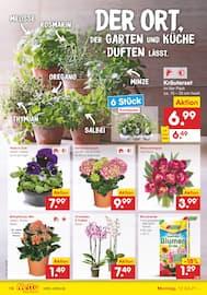 Aktueller Netto Marken-Discount Prospekt, DER ORT, AN DEM ANGEBOTE ECHT DUFTE SIND., Seite 14