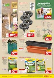 Aktueller Netto Marken-Discount Prospekt, Fisch verliebt? Dann geh doch zu Netto!, Seite 25