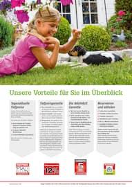 Aktueller BAUHAUS Prospekt, Alles rund um unser Grün., Seite 2