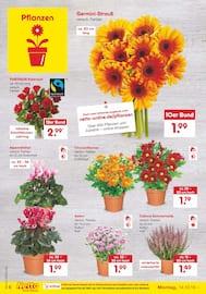Aktueller Netto Marken-Discount Prospekt, Kaufe unverpackt!, Seite 8