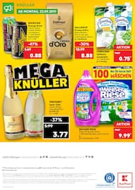 Aktueller Kaufland Prospekt, Mega Knüller, Seite 48
