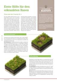 Aktueller BAUHAUS Prospekt, Alles rund um unser Grün., Seite 42