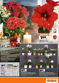 Aktueller OBI Prospekt, Willkommen im OBI Weihnachtsmarkt!, Seite 7