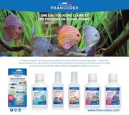 Catalogue Truffaut en cours, Mon aquarium, une évasion en couleurs ! , Page 2