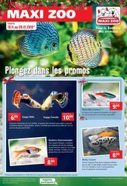 Catalogue Maxi Zoo en cours, Plongez dans les promos, Page 1