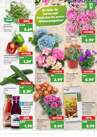 Aktueller Kaufland Prospekt, Lust auf Sommer, Seite 17