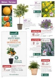 Catalogue Botanic en cours, Oui, au printemps qui fait du bien !, Page 6