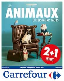 Catalogue Carrefour en cours, Les animaux et leurs talents cachés, Page 1