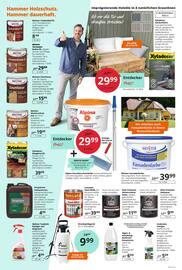 Aktueller Hammer Prospekt, Jetzt hammer günstig einkaufen! Entdecker-Preise in allen Abteilungen! , Seite 4