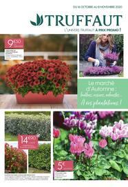 Catalogue Truffaut en cours, Le marché d'Automne : bulbes, rosiers, arbustes... À vos plantations !, Page 1