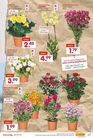 Aktueller Netto Marken-Discount Prospekt, Nachhaltig und lecker!, Seite 37