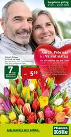 Aktueller Pflanzen Kölle Prospekt, Am 14. Februar ist Valentinstag , Seite 1
