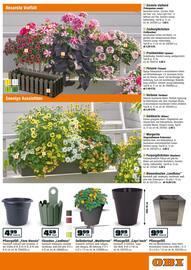 Aktueller OBI Prospekt, Möbelt den Garten auf!, Seite 11