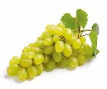 Weintrauben im aktuellen NETTO mit dem Scottie Prospekt für 1.46€