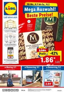 Lidl Prospekt Mega Auswahl! Beste Preise!
