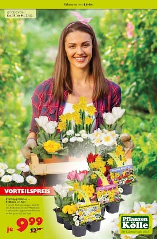 Aktueller Pflanzen Kölle Prospekt, Pflanzen mit Liebe., Seite 1