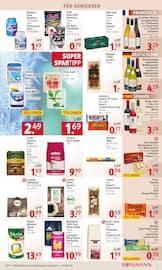 Aktueller Rossmann Prospekt, Mein Drogeriemarkt., Seite 13
