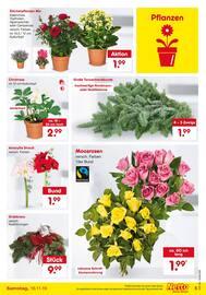Aktueller Netto Marken-Discount Prospekt, Weihnachts-Vorboten, Seite 5