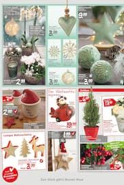 Aktueller Blumen Risse Prospekt, Glücksmomente in der Weihnachtszeit, Seite 4