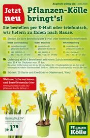 Aktueller Pflanzen Kölle Prospekt, Jetzt neu:  Pflanzen Kölle bringt's!, Seite 1