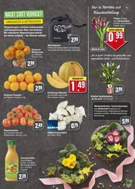 Aktueller EDEKA Prospekt, Eine kulinarische Italien-Reise., Seite 15