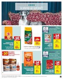 Catalogue Carrefour en cours, Les animaux et leurs talents cachés, Page 13