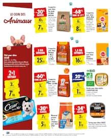 Catalogue Carrefour en cours, Le meilleur du jardin moins cher, Page 10