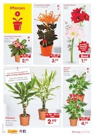 Aktueller Netto Marken-Discount Prospekt, Nackte Tatsache: Wir haben unverpacktes Obst und Gemüse., Seite 4