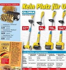 Reinigungsmittel von Gloria im aktuellen BAUHAUS Prospekt für 57.99€
