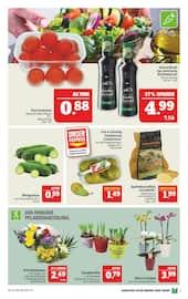 Aktueller Marktkauf Prospekt, 5€-Aktions-Woche, Seite 9