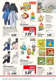 Aktueller Lidl Prospekt, Dein Einkauf -  Schnell erledigt!, Seite 15