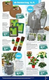 Aktueller ALDI SÜD Prospekt, Meine Woche, Seite 31