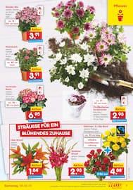 Aktueller Netto Marken-Discount Prospekt, EINER FÜR ALLES. ALLES FÜR GÜNSTIG., Seite 7