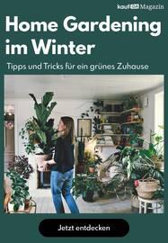 Aktueller kaufDA Magazin Prospekt, Home Gardening im Winter, Seite 1