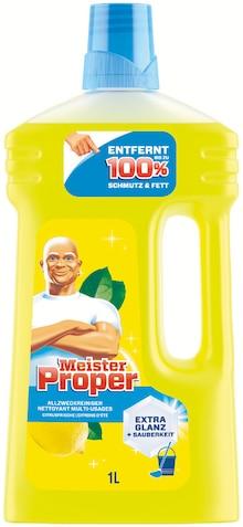 Reinigungsmittel von Meister Proper im aktuellen NETTO mit dem Scottie Prospekt für 1.29€