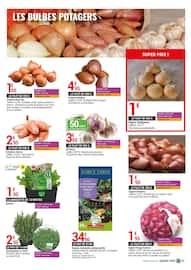 Catalogue Gamm Vert en cours, Les bonnes récoltes !, Page 3