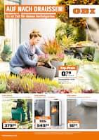 Aktueller OBI Prospekt, AUF NACH DRAUSSEN! Es ist Zeit für deinen Herbstgarten., Seite 1