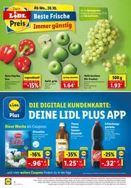 Aktueller Lidl Prospekt, Dein Einkauf -  Schnell erledigt!, Seite 4