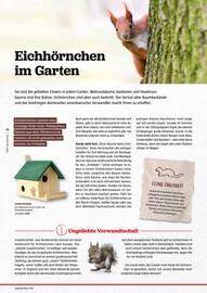 Aktueller BAUHAUS Prospekt, Mehr Natur!, Seite 38