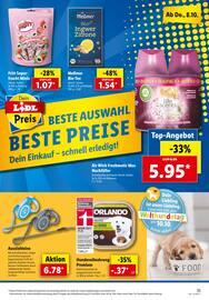 Aktueller Lidl Prospekt, Dein Einkauf -  Schnell erledigt!, Seite 35